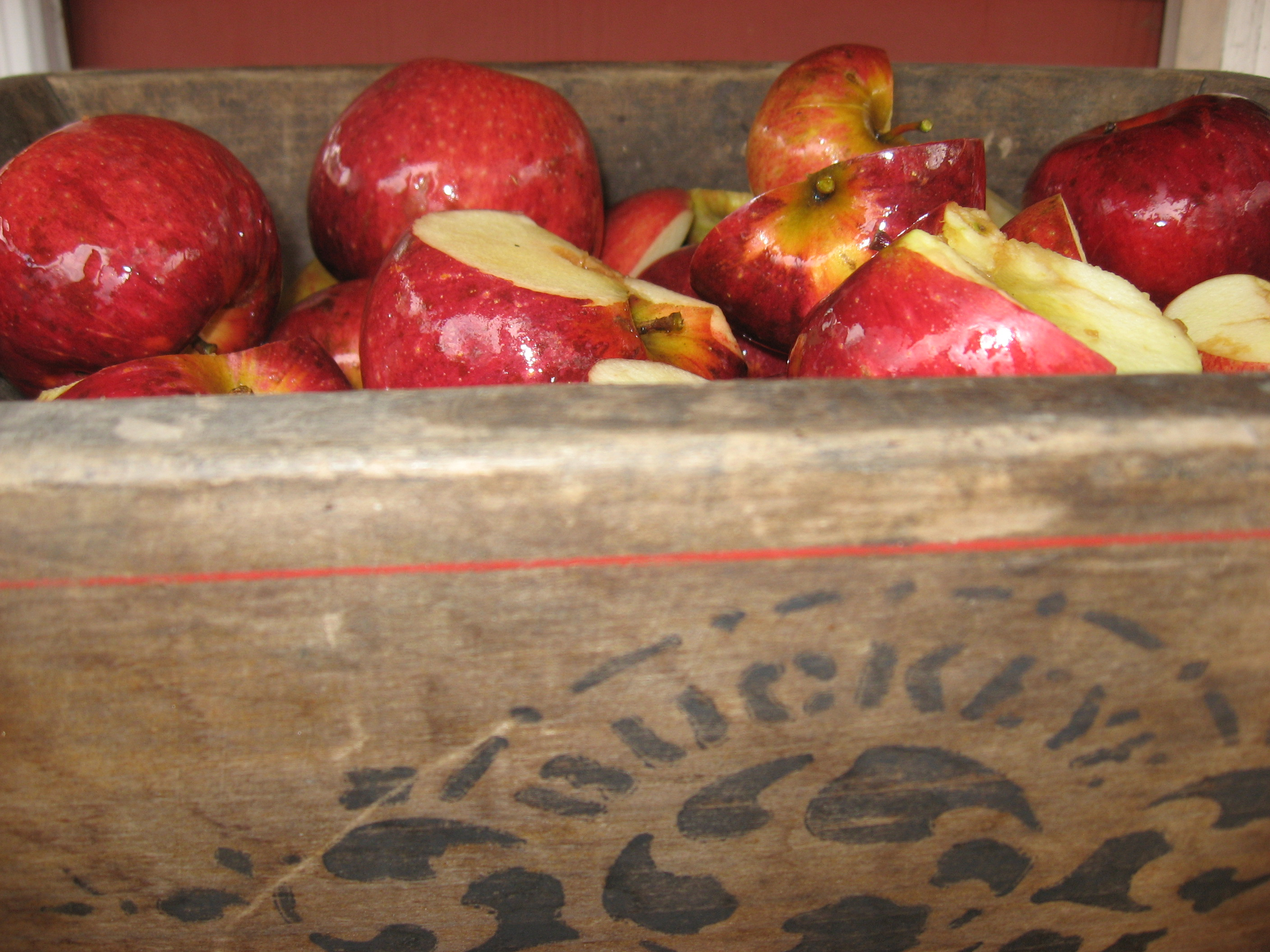 Apples ready for the cider press